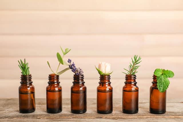 10 Popular Essential Oils for Beginners
