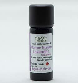 Lavender essential oil Glorious