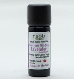 Lavender essential oil Glorious